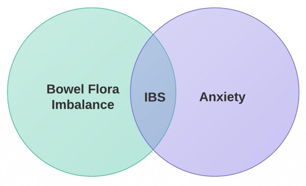 IBS Venn - Plain